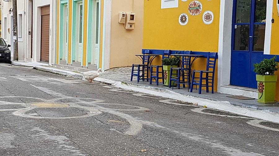 Η Κορώνη μέσα από το οδοιπορικό της Μαρκέλλας Σαράιχα