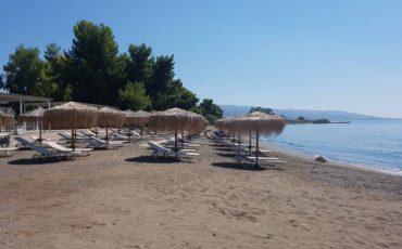 Γενική Γραμματεία Πολιτικής Προστασίας: Ανοίγουν οι οργανωμένες παραλίες-Τι θα ισχύει
