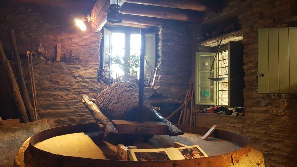 Το Μουσείο Ελιάς είναι απ΄τα δέκα καλύτερα της Ελλάδας