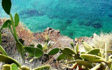 Ο Γύρος της Αρβανιτιάς στο Ναύπλιο