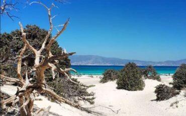Νήσος Χρυσή: Ταξίδι στο πειρατικό νησί με τα φοινικόδεντρα και τα γαλαζοπράσινα νερά