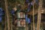 Lift Bali: Το ονειρεμένο δεντρόσπιτο με υπηρεσίες boutique hotel στοιχίζει 30 ευρώ τη βραδιά!