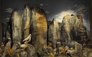 Δύο Βραβεία για το Μουσείο Φυσικής Ιστορίας Μετεώρων