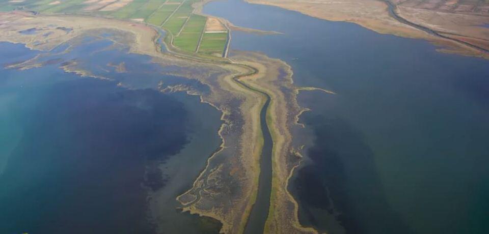 """Εκβολές Σπερχειού Ποταμού: """"Ο πράσινος πλανήτης"""" το πιο απόκοσμο τοπίο στην Ελλάδα (video)"""