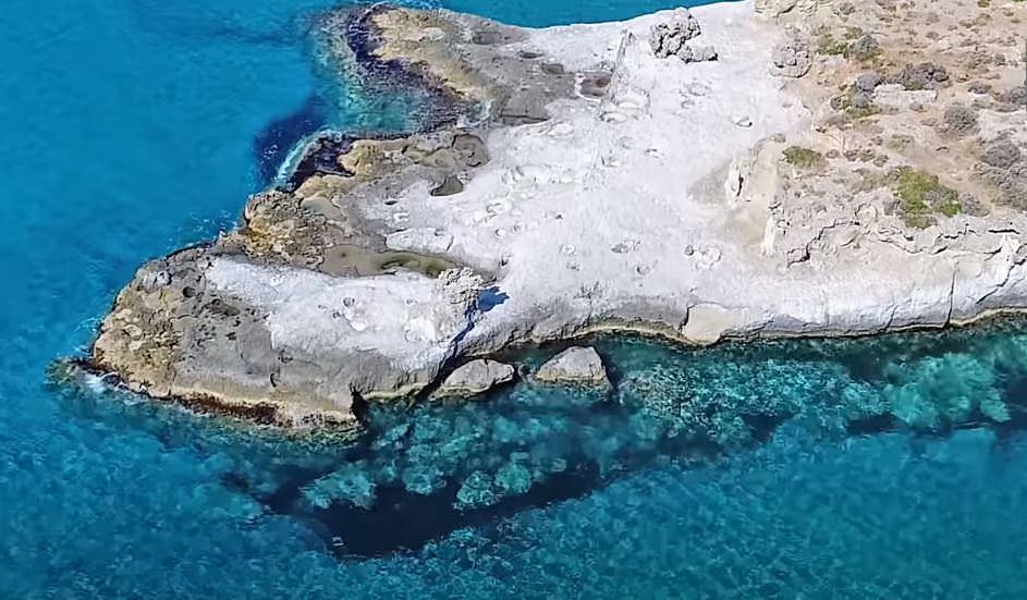 Αυτό είναι το μοναδικό απολιθωμένο φοινικόδασος της Ευρώπης στην άκρη της Ελλάδας ηλικίας 3.000.000 ετών