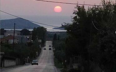 Κρεμμύδια Μεσσηνίας: Το ελληνικό χωριό που έχει μπει στο ρεκόρ Γκίνες!