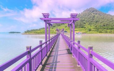 Banwol: Ταξίδι στο μοβ νησί της Νότιας Κορέας