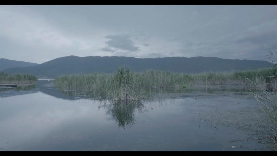Πρέσπες: Σταγόνες Υδάτινων Κόσμων-Το ντοκιμαντέρ που επιλέχθηκε να κάνει παγκόσμια πρεμιέρα στο 15οLos Angeles Greek Film Festival