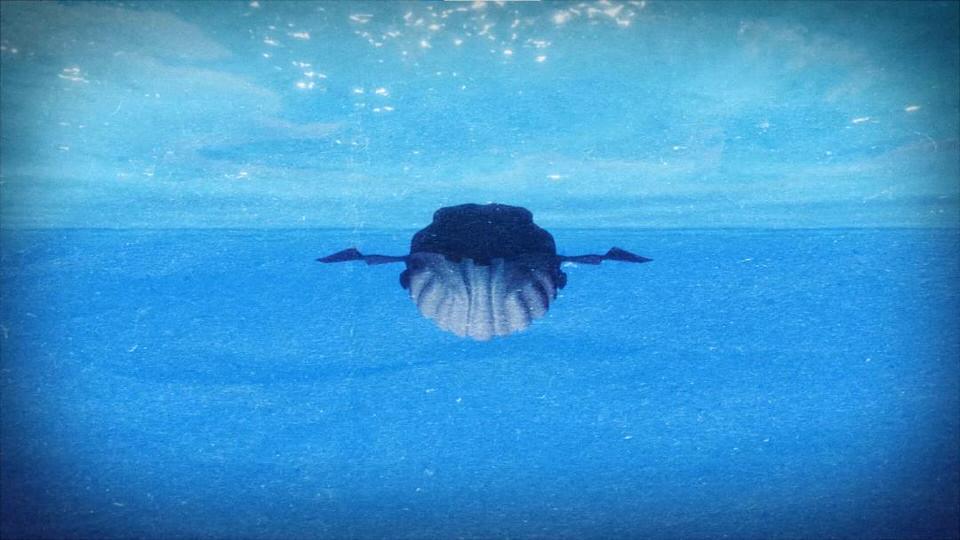 Το μουσικό παραμύθι «Πώς βρέθηκε ένα κοράκι στην κοιλιά της φάλαινας;» έρχεται στην GNO TV