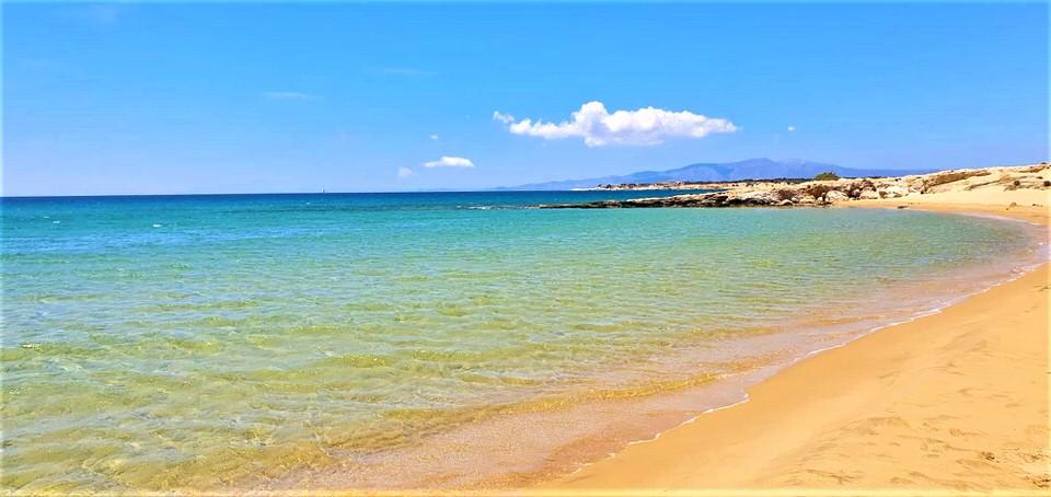 Πυργάκι Νάξου: Η παραλία των 3 χιλιομέτρων με τους σπάνιους σκιερούς κέδρους