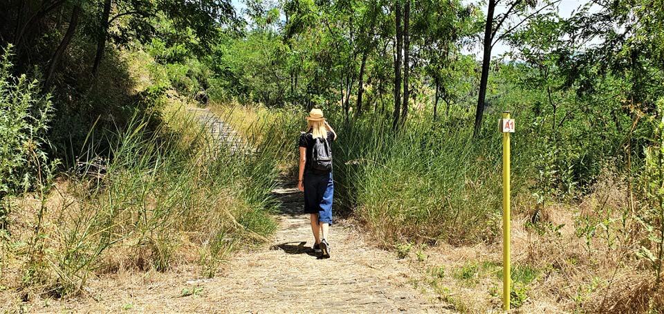 Μονοπάτι της Βίδρας: Το travelgirl.gr σε ξεναγεί σε μία από τις ομορφότερες διαδρομές στην Ελλάδα